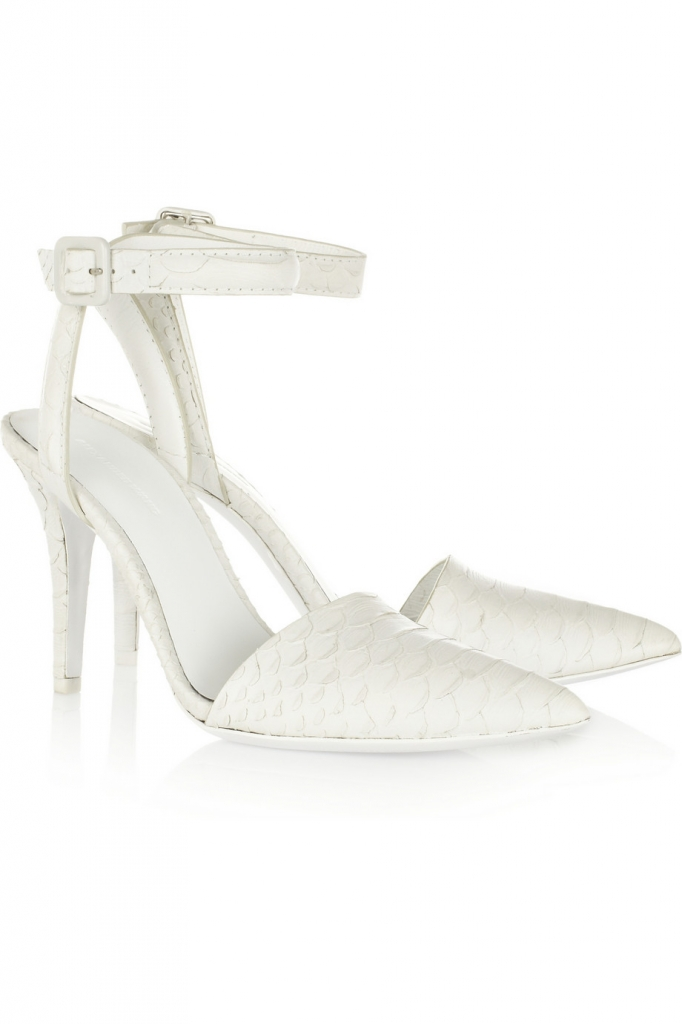 Journelles_Schuhtrends_2013_Alexander_Wang_Pumps