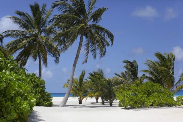 Velassaru auf den Malediven