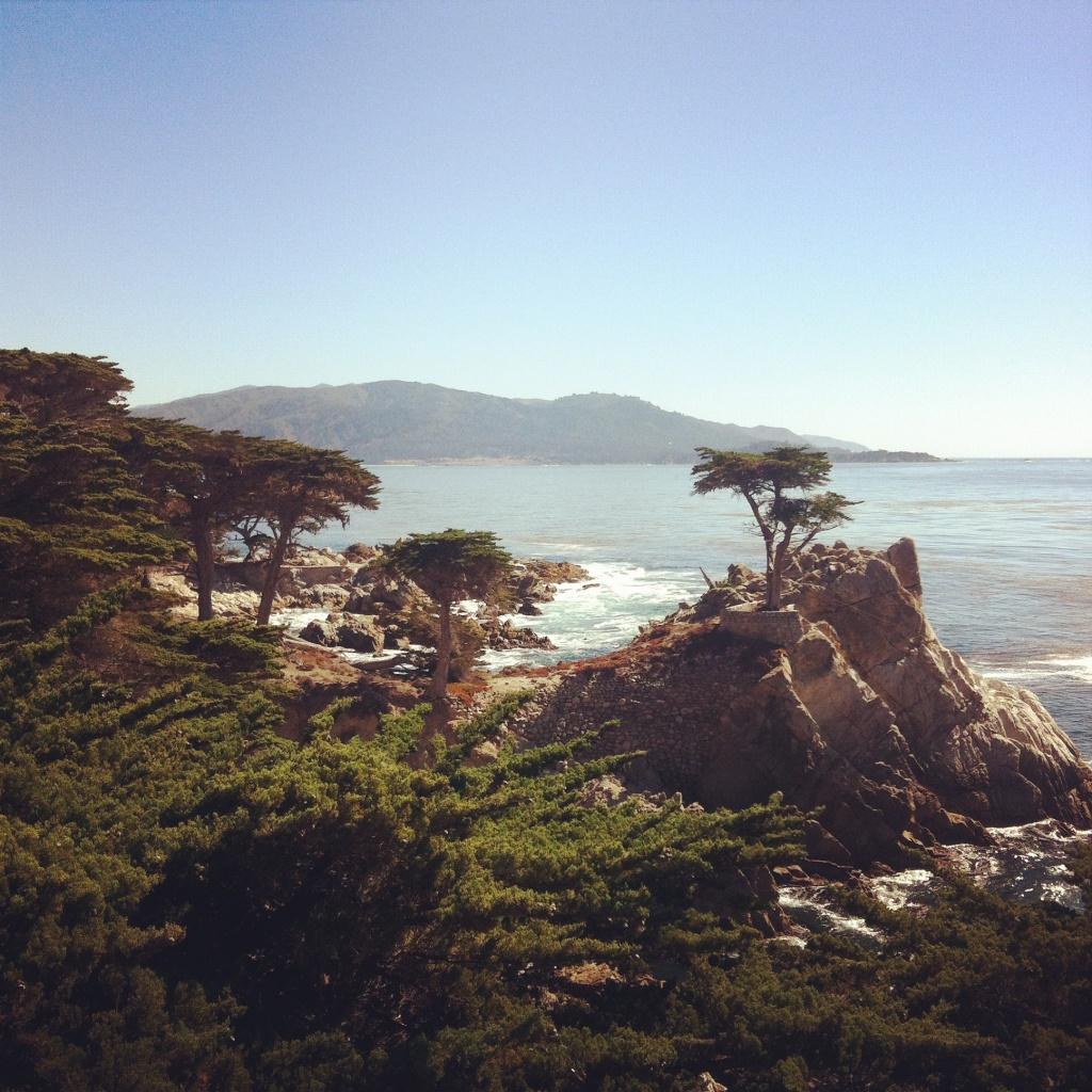 Journelles_Reise_Kalifornien_Lone_Cypress_17_mile_drive