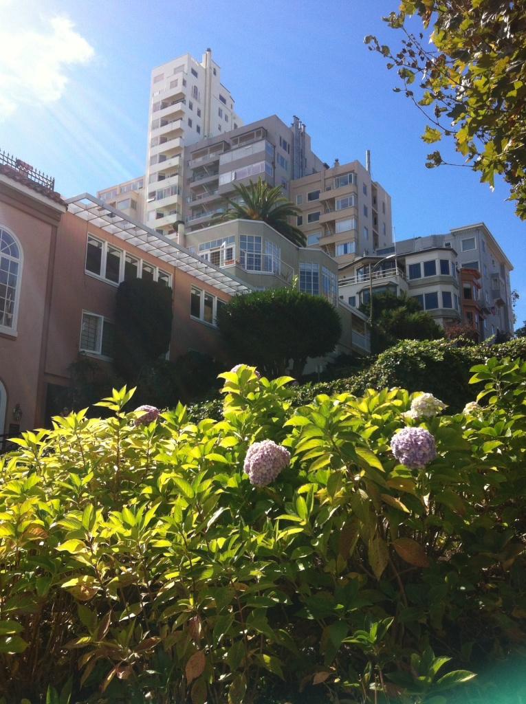 Journelles_Reise_Kalifornien_San_Francisco_Lombard_Street_3