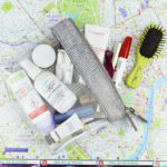 Travel Beauty Bag / Journelles