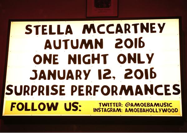 Journelles-Stella-McCartney-Pre-Fall-2016-15